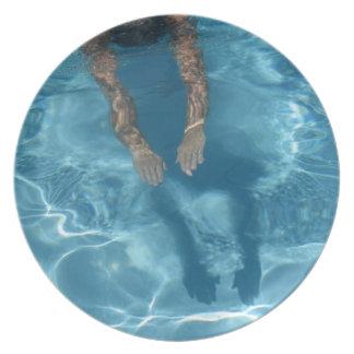 Zambullida-En la placa de la melamina Plato
