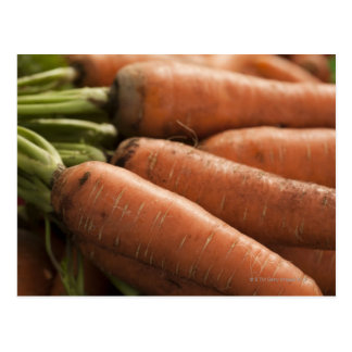 Zanahorias frescas en el cuadrado Greenmarket de Postal