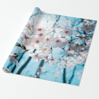 Zen japonés de la flor de cerezo papel de regalo