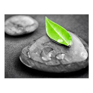 ZENES Stone