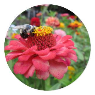 Zinnia bonito con la abeja invitación 13,3 cm x 13,3cm