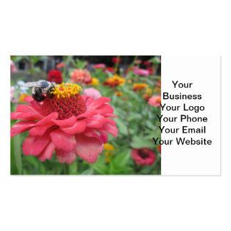 Zinnia bonito con la abeja tarjetas de visita
