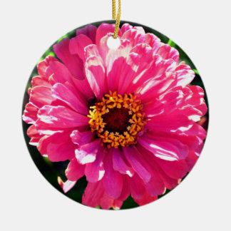Zinnia rosado adorno de cerámica