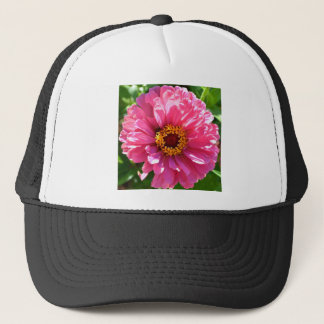 Zinnia rosado gorra de camionero