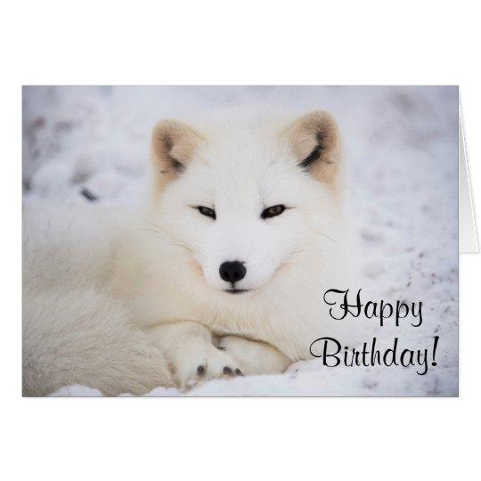 Zorro ártico blanco tarjeta pequeña