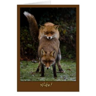 Zorros de acoplamiento tarjeta de felicitación