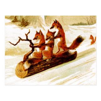 Zorros Sledding a través de la nieve en un Postal