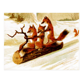 Zorros Sledding a través de la nieve en un registr Postal